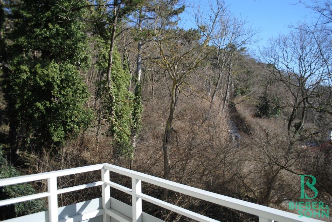 Balkon / Aussicht