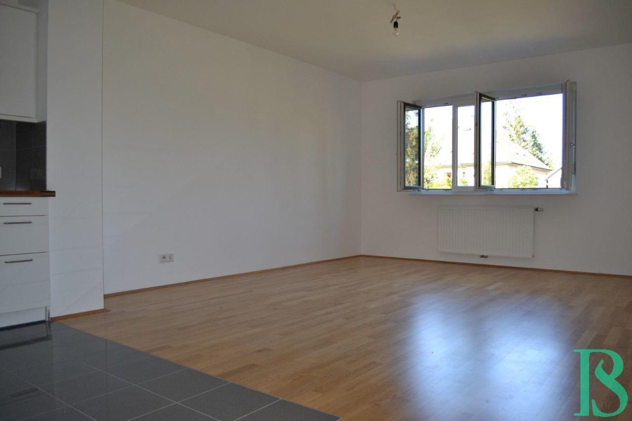 Wohnraum/Küche/Ausblick