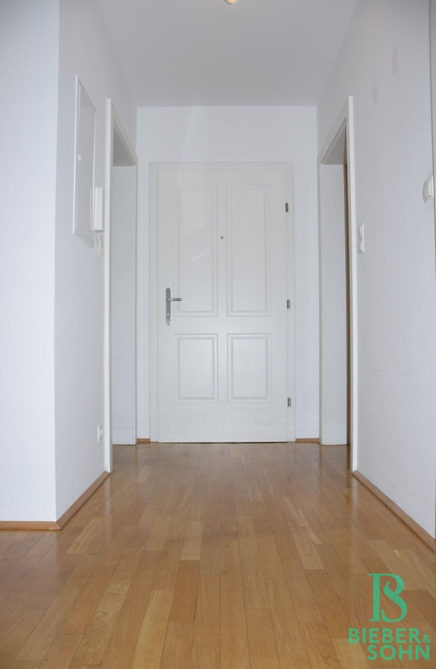Blick Eingang/Vorraum