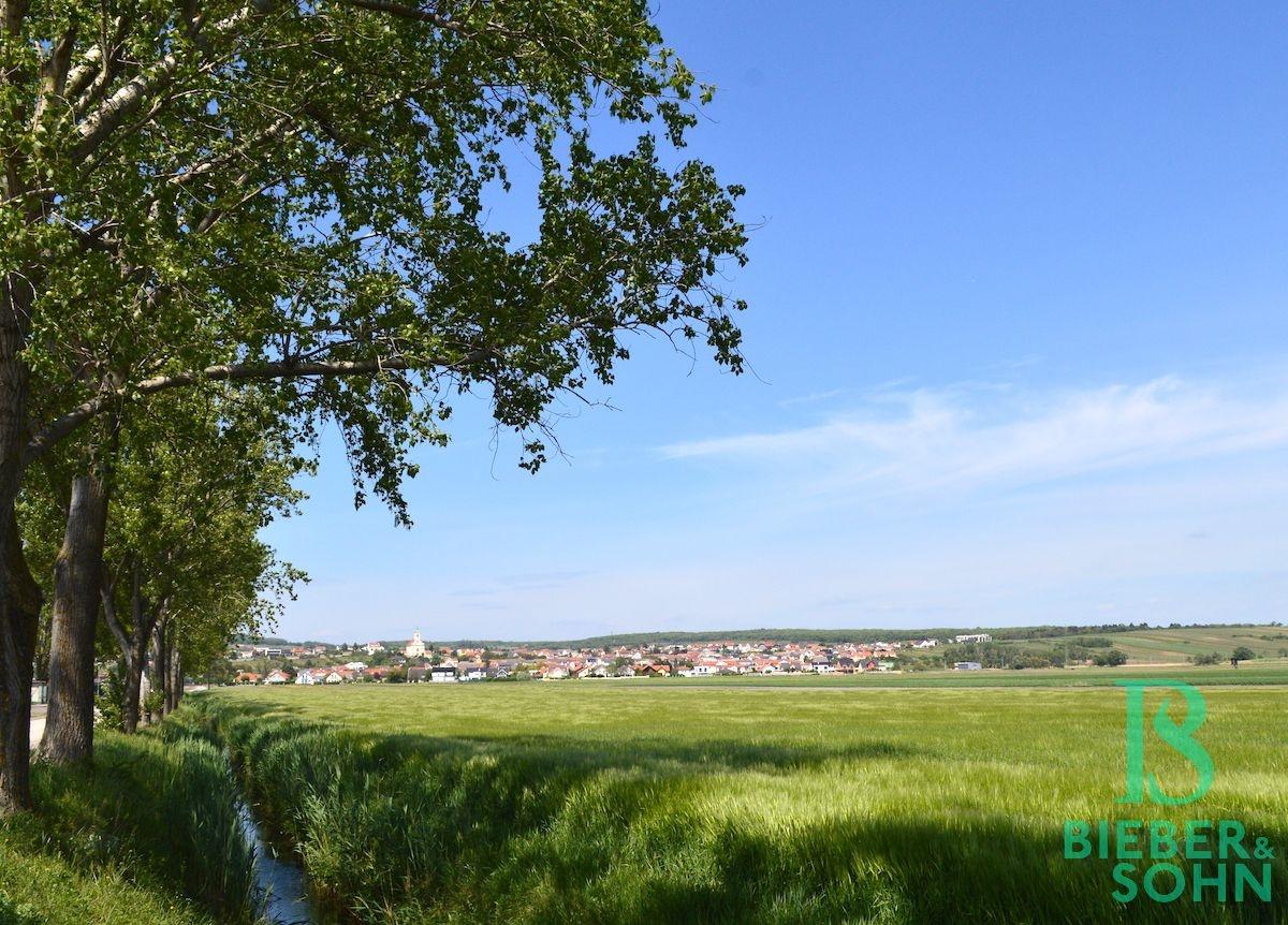 Radweg nach Neusiedl