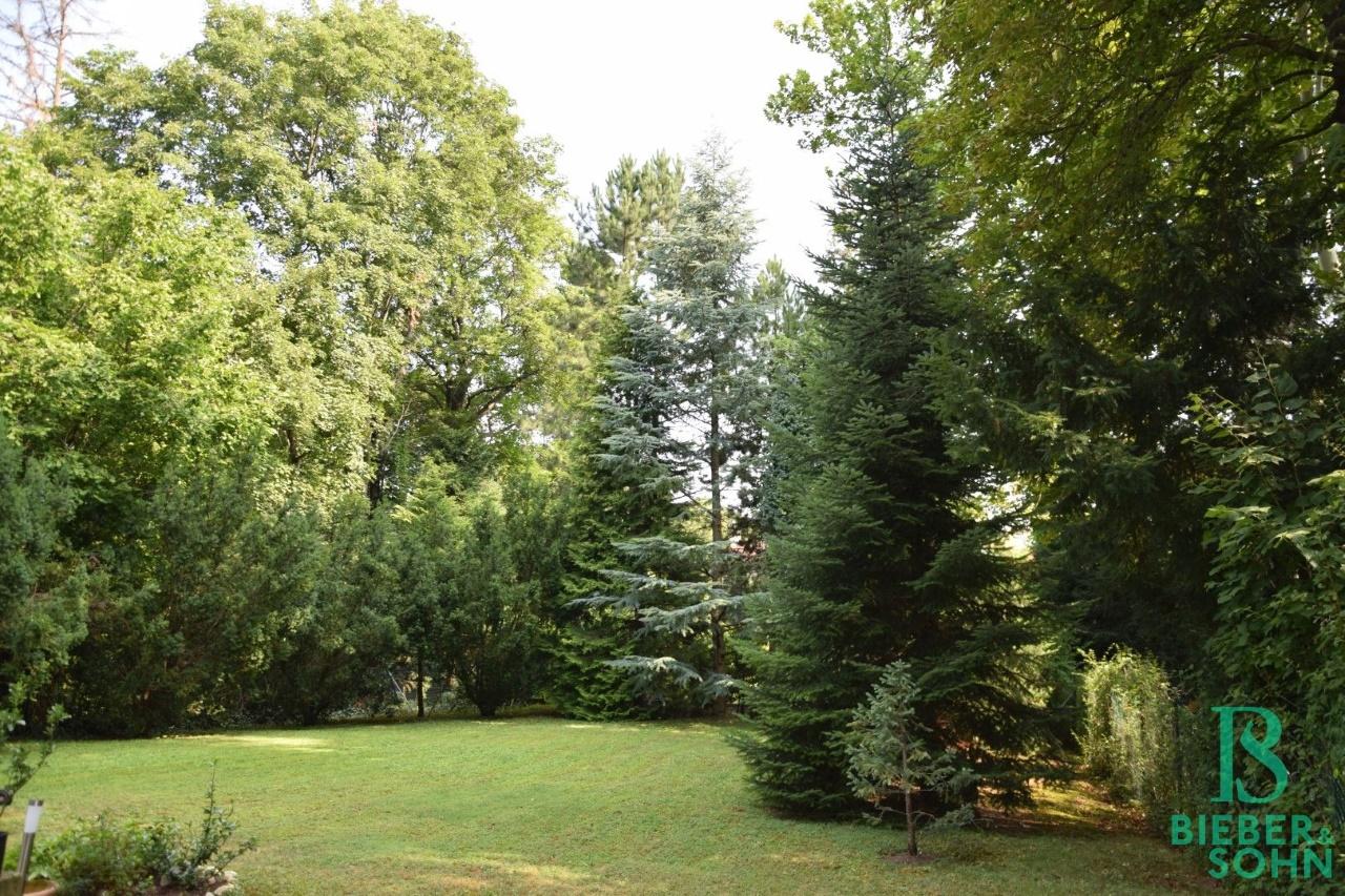 Allgemeingarten
