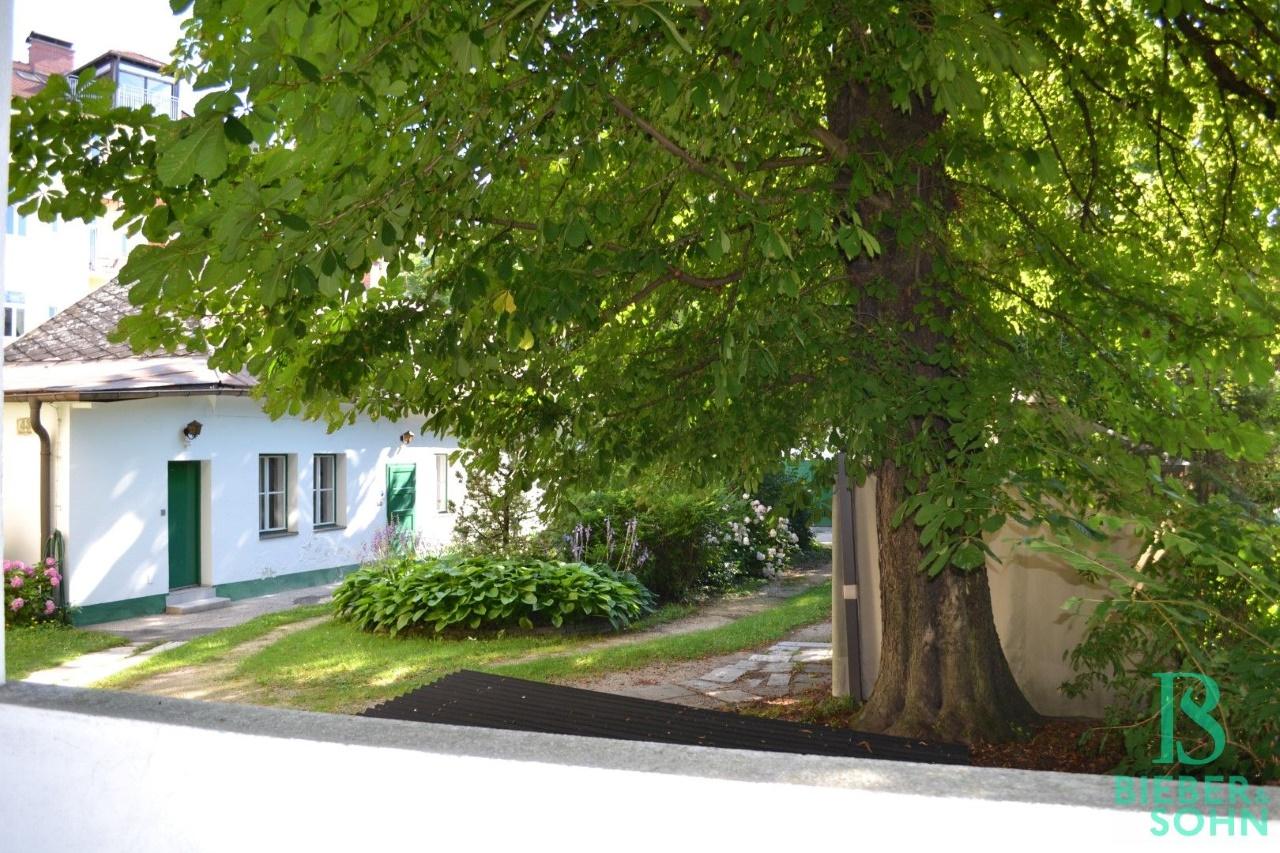 Blick Grünanlage Innenhof/Sommeraufnahme