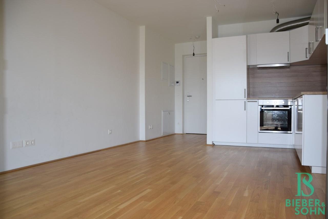 Blick Wohnraum/Küche