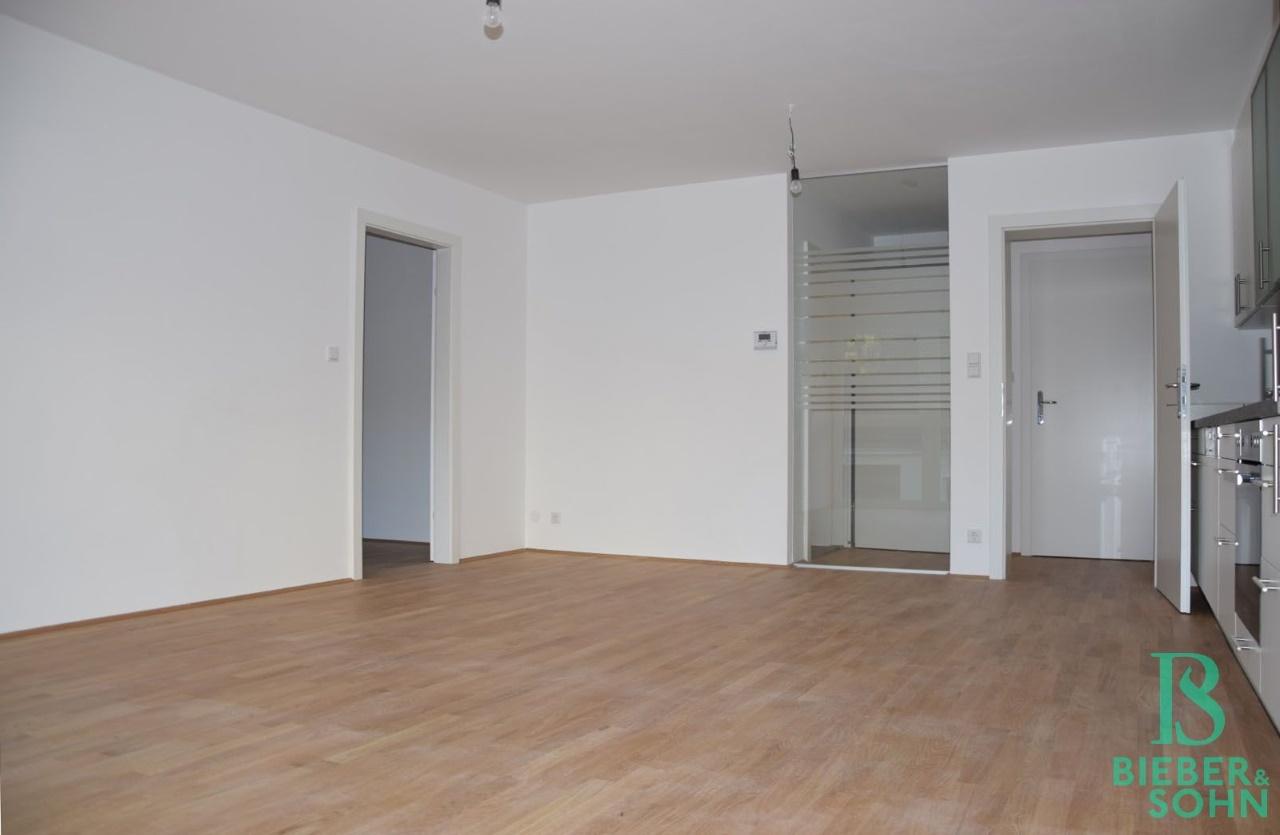 Wohnraum/Blick Vorraum/Zimmer