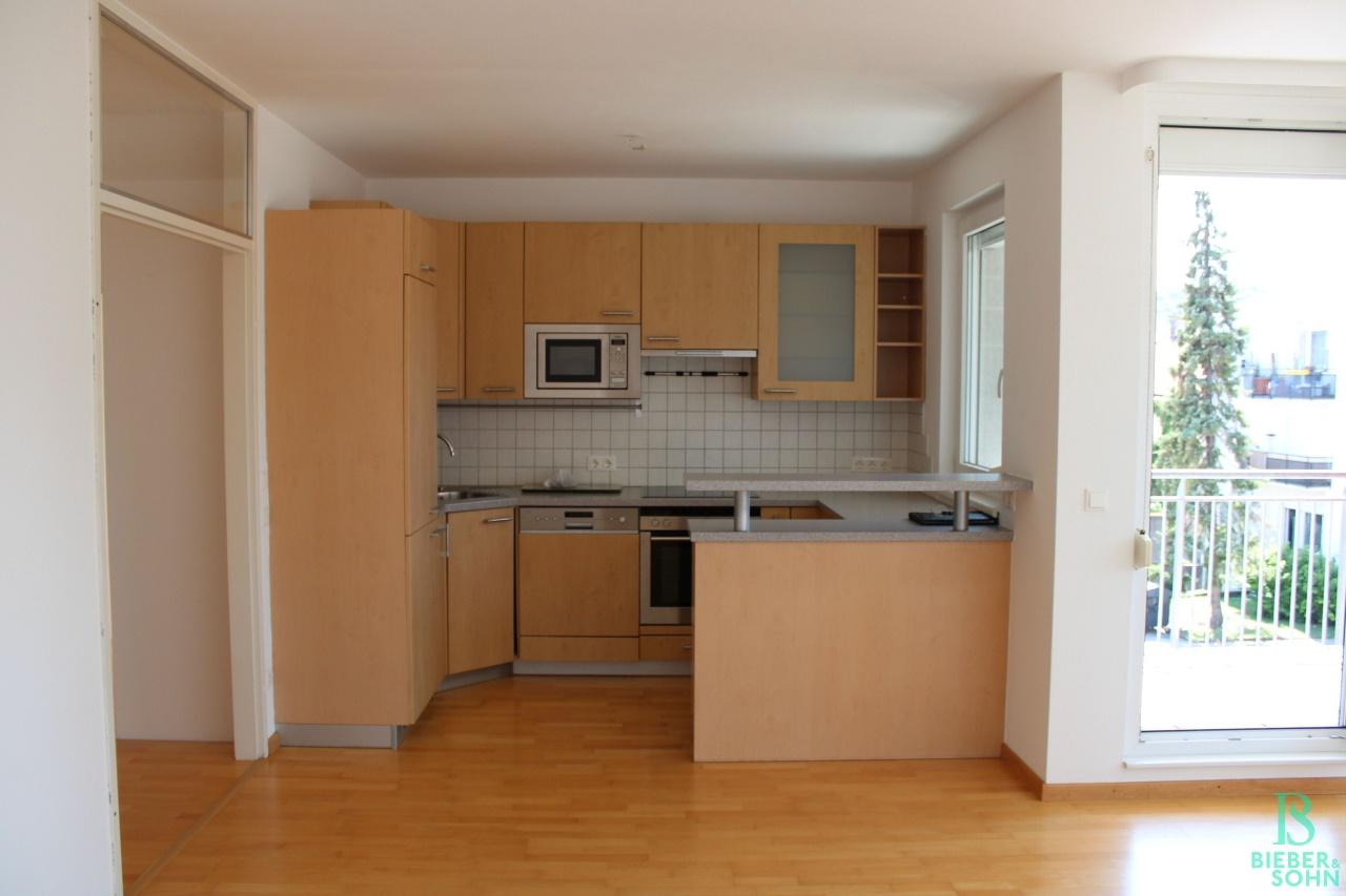 Wohnzimmer / Küche / Balkon