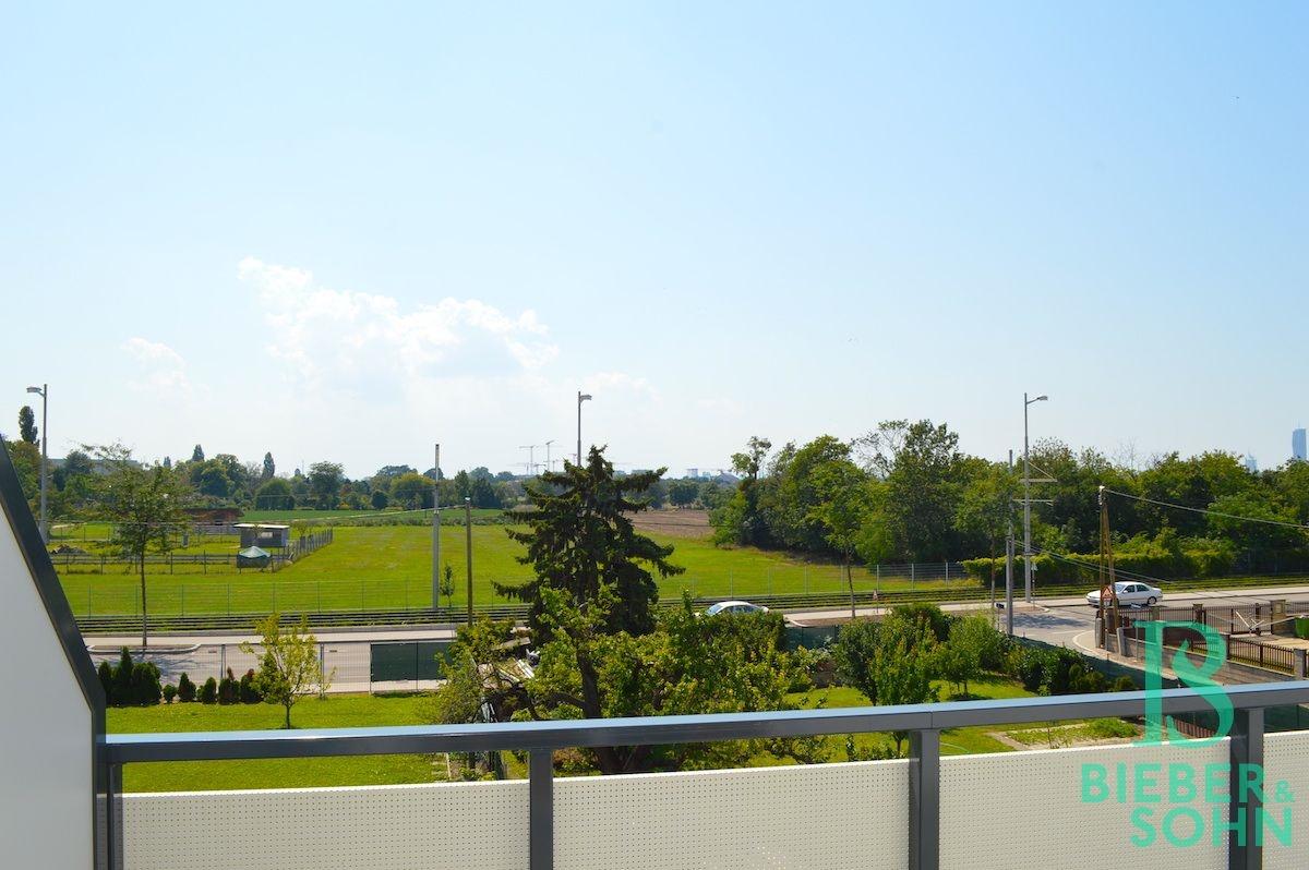 Ausblick Süd-Terrasse