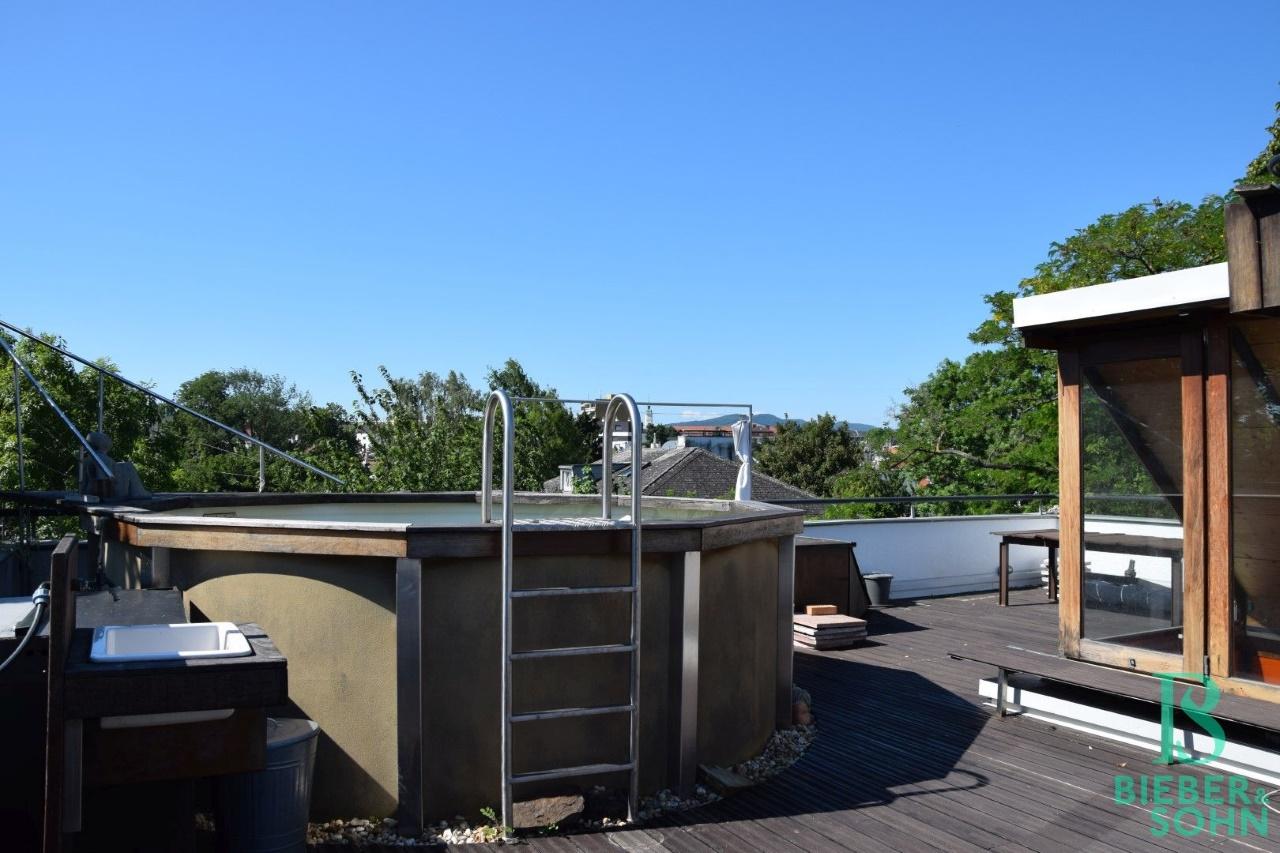 Dachterrasse/Pool