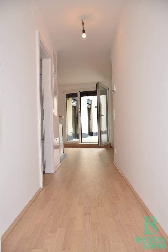 Vorraum/Eingang/Blick Terrasse