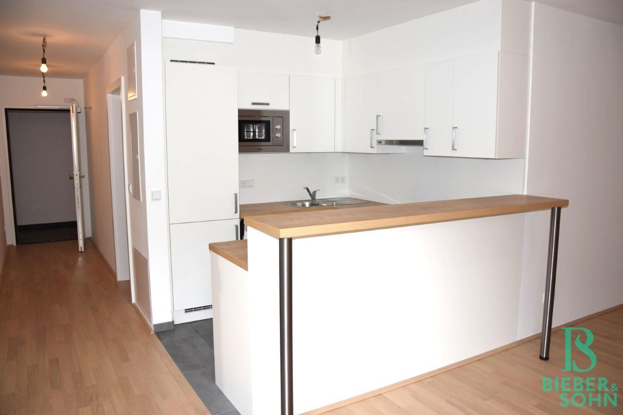 Küche/Blick Vorraum/Eingang