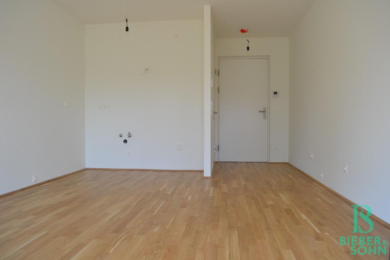Wohnraum/Blick Küche/Eingang